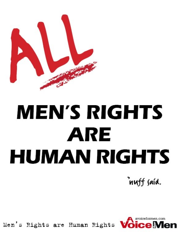 Poster: ALL Men's Rights are Human Rights. 'nuff said.
