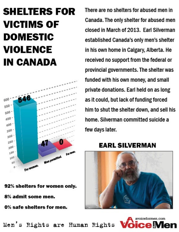 Poster: Domestic Violence Shelter Stats - Silverman