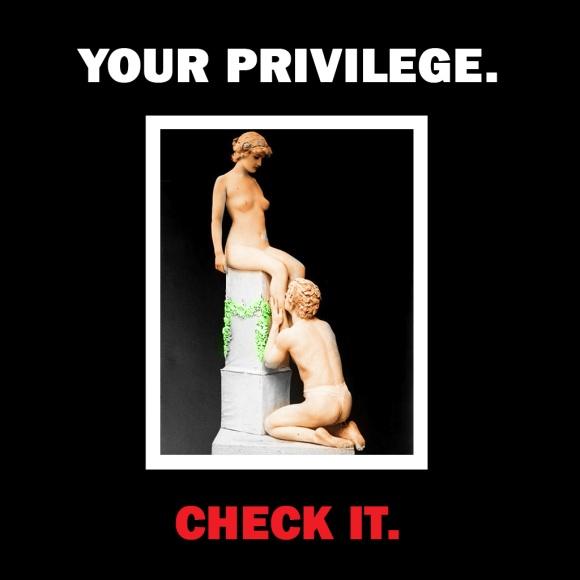 2014-02-14 YOUR PRIVILEGE. Check it.