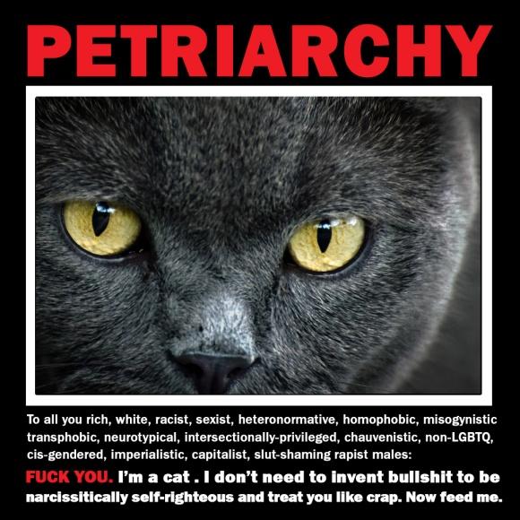 Petriarchy