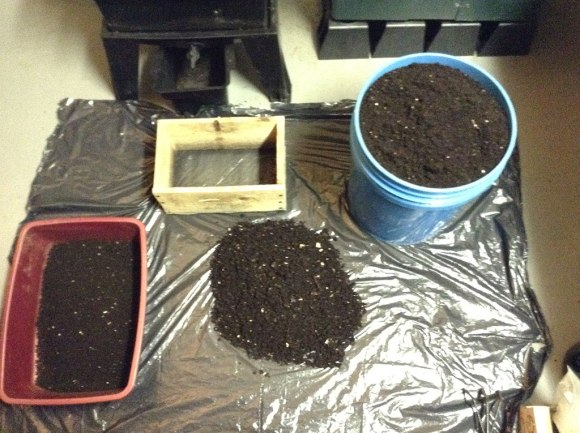 Image of different grades of vermicompost.